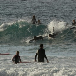 People surf as Bondi Beach reopens to surfers and swimmers after it was closed to curb the spread of the coronavirus disease (COVID-19), with strict social distancing measures remaining in place, in Sydney, Australia, April 28, 2020. REUTERS/Loren Elliott